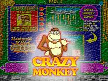 Игровые автоматы обезьянки с каской